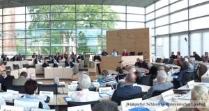 Analyse: Altenparlamente in Schleswig-Holstein 2015 und 2016