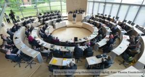Landtag Schleswig-Holstein: Sozialausschuss zum Pflegeberufegesetz